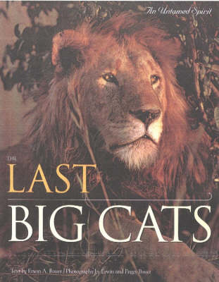 Last Big Cats: An Untamed Spirit (Hardback)