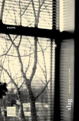 Slag: Poems - Walt Mcdonald First-book Series in Poetry (Hardback)