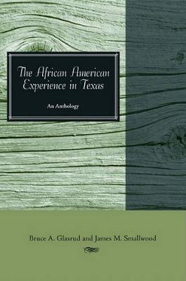 The African American Experience in Texas: An Anthology (Paperback)