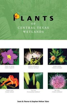 Plants of Central Texas Wetlands - Grover E. Murray Studies in the American Southwest (Paperback)