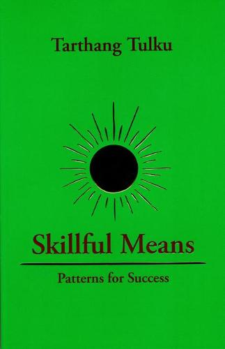 Skilful Means: Patterns of Success (Paperback)