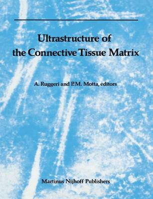 Ultrastructure of the Connective Tissue Matrix - Electron Microscopy in Biology and Medicine 3 (Hardback)
