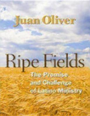 Ripe Fields: The Promise and Challenge of Latino Ministry (Paperback)