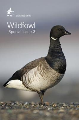 Wildfowl Special Issue 3 - Wildfowl Journal (Paperback)