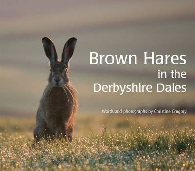 Brown Hares in the Derbyshire Dales (Paperback)