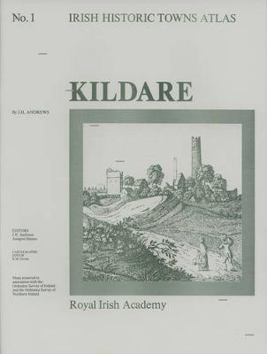 Kildare - Irish Historic Towns Atlas 1 (Sheet map, folded)