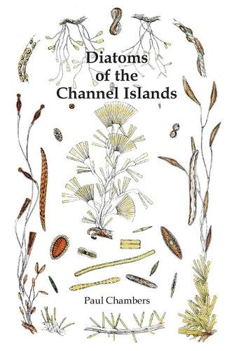 Diatoms of the Channel Islands (Paperback)