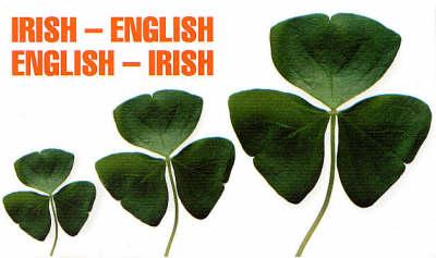 Irish-English, English-Irish Dictionary (Paperback)