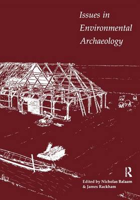 Issues in Environmental Archaeology - UCL Institute of Archaeology Publications (Paperback)