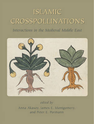 Islamic Crosspollinations: Interactions in the Medieval Middle East - Gibb Memorial Trust Arabic Studies (Hardback)