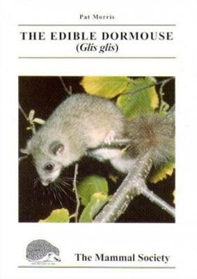 The Edible Dormouse (Glis glis) - Mammal Society Species Series (Paperback)