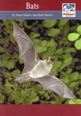 Bats - Mammal Society Species Series (Paperback)