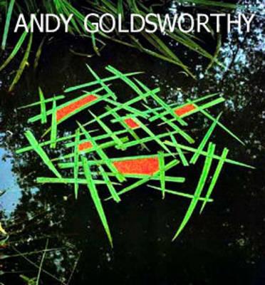 Andy Goldsworthy (Hardback)