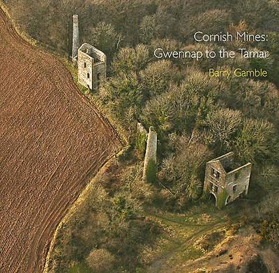 Cornish Mines: Gwennap to the Tamar - Pocket Cornwall (Paperback)