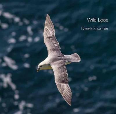 Wild Looe - Pocket Cornwall (Paperback)