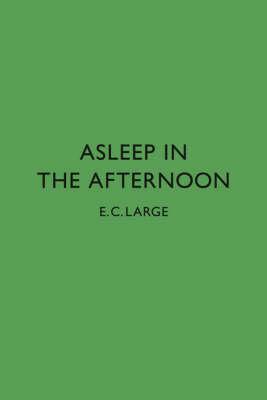 Asleep in the Afternoon (Hardback)