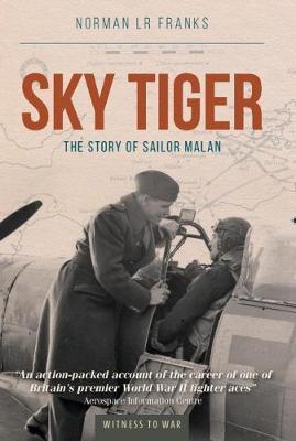 Sky Tiger (Paperback)