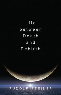 Life Between Death and Rebirth: The Active Connection Between the Living and the Dead (Paperback)