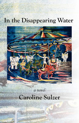 In the Disappearing Water (Paperback)