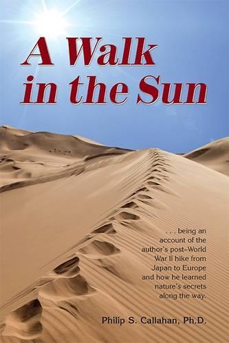 A Walk in the Sun (Paperback)