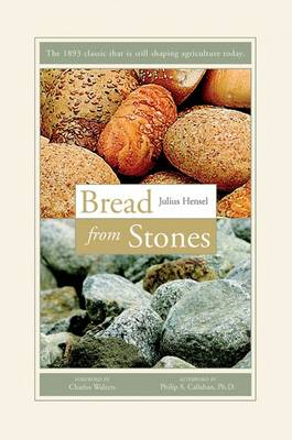 Bread from Stones (Paperback)