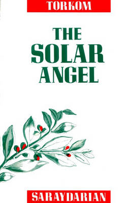 The Solar Angel (Hardback)