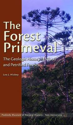 The Forest Primeval - The Geologic History of Wood and Petrified Forests (Paperback)