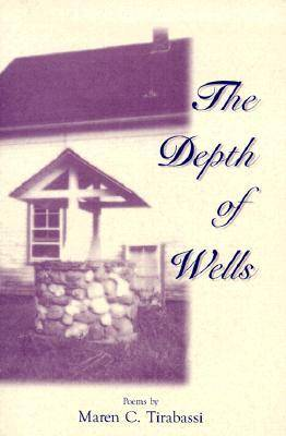 The Depth of Wells: Poems (Paperback)