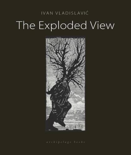 The Exploded View (Paperback)