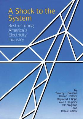 A Shock to the System: Restructuring America's Electricity Industry (Paperback)