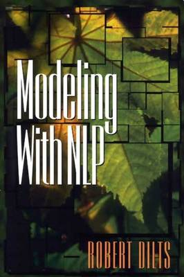 Modeling with NLP (Paperback)