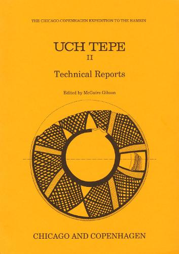 Uch Tepe II: Technical Reports (Paperback)