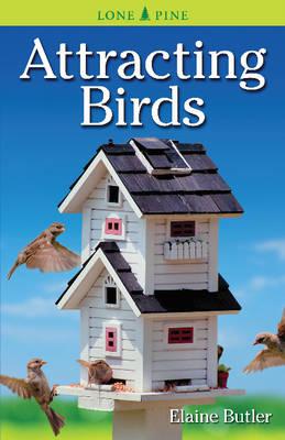 Attracting Birds (Paperback)