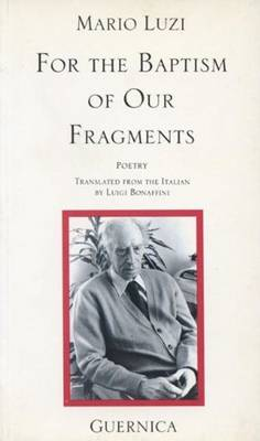 For the Baptism of Our Fragments (Paperback)