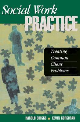 Social Work Practice: Treating Common Client Problems (Paperback)