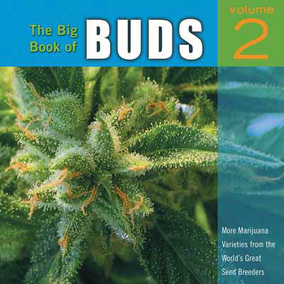 The Big Book Of Buds Vol. 2: More Marijuana Varieties from the World's Greatest Seed Breeders (Paperback)
