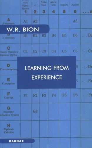 Learning from Experience (Paperback)