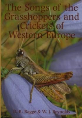 The Songs of the Grasshoppers and Crickets of Western Europe (Hardback)