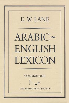 Arabic-English Lexicon (Hardback)