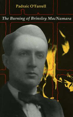 The Burning of Brinsley MacNamara (Paperback)