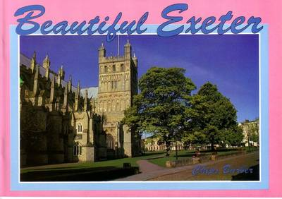 Beautiful Exeter (Paperback)