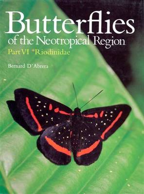 Butterflies of the Neotropical Region: Riodinidae Pt. 6 - Butterflies of the World S. (Hardback)