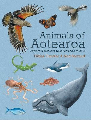 Animals of Aotearoa: Explore & discover New Zealand's wildlife (Hardback)