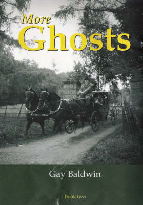 More Ghosts: More Ghosts of the Isle of Wight - Ghosts of the Isle of Wight Bk 2 (Paperback)
