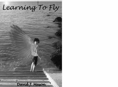 Learning to Fly (Paperback)