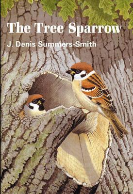 Tree Sparrow (Hardback)