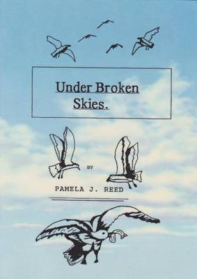 Under Broken Skies (Paperback)