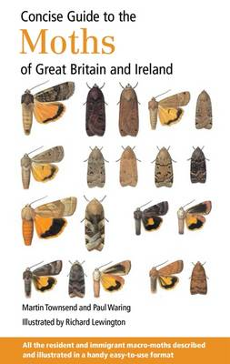 Concise Guide to the Moths of Great Britain and Ireland (Spiral bound)