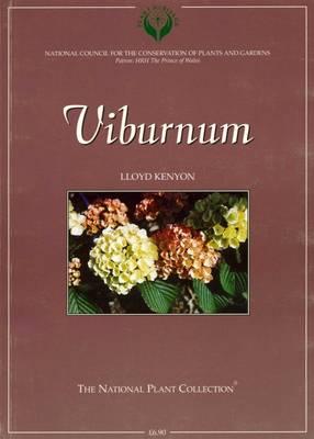 Viburnum (Paperback)