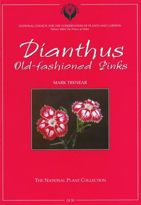 Dianthus: Old-fashioned Pinks (Paperback)